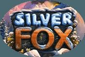 Автомат Вулкан Silver Fox