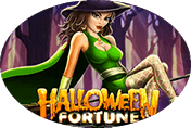 Автомат Вулкан Halloween Fortune